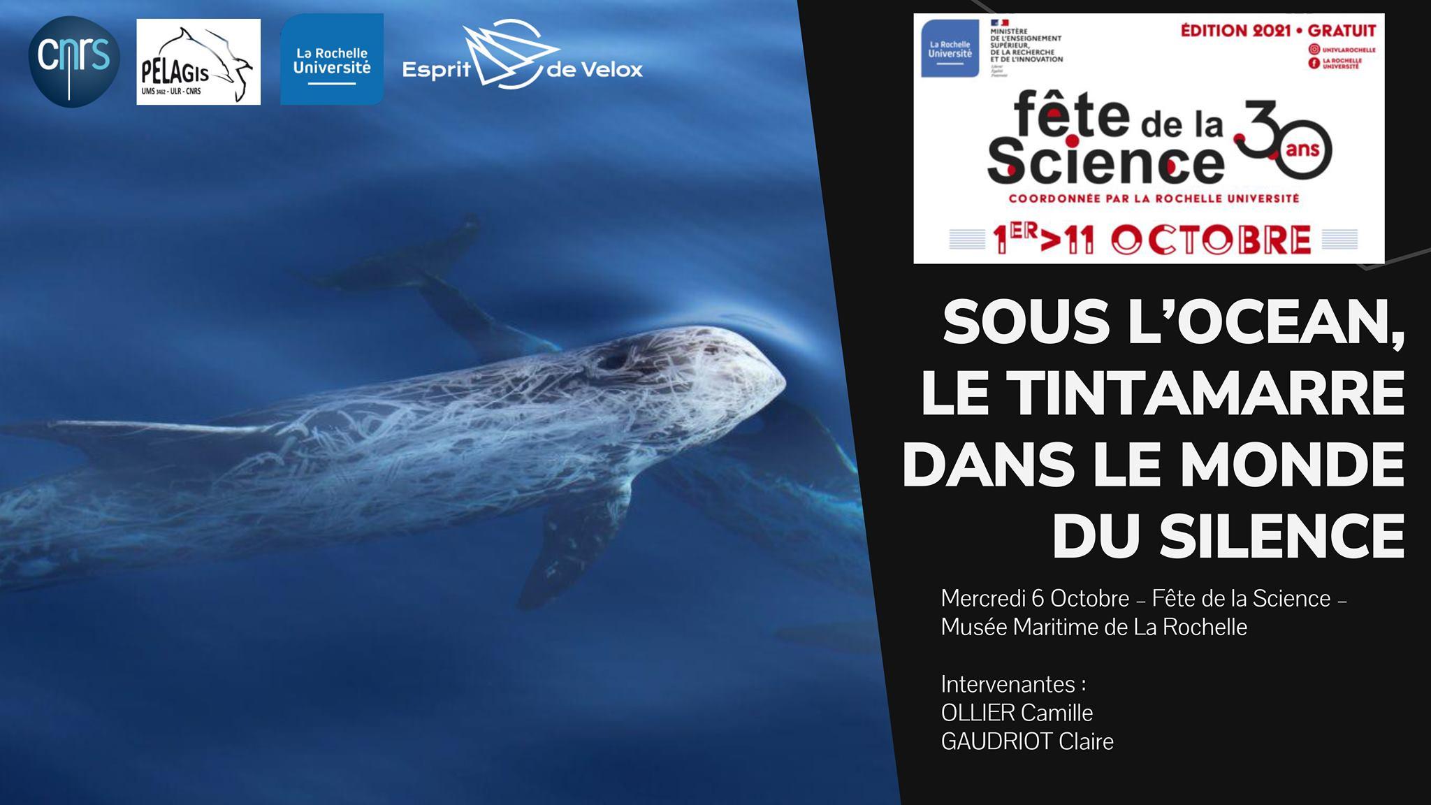 Fête de la Science 2021 EdV et pelagis diffusion de Sonic Sea
